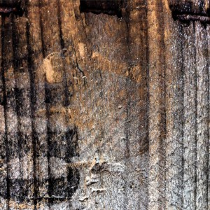 holz maserung, holz, wood, textures, free textures, kostenlose fotos, lizenzfreie fotos, waldbrand® media