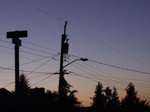 Seattle, Stommast, Sonnenuntergang, sunset, trees, evergreen state, silhouette, kontrast, bäume, foto,fotografie, stock photo, lizenzfrei, waldbrand media
