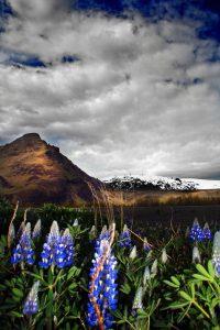 island, eyjafjallajokull, vulkan,berge, iceland, free stock images, lizenzfreie fotos, datenbank, bilderdatenbank, fotografie, bildbearbeitung, image editing, photography