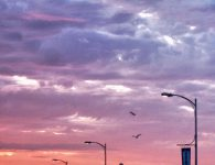 Sonnenuntergang, Port Angeles, wolken, bewölkt, farbige wolken, drama, dramatische wolken, laternen, silhouetten, fotografie, kostenlose fotos, free stock images, lizenzfreie fotos