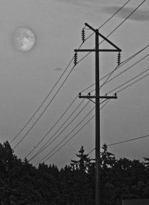 mond, supermond, supermoon, moon, nacht, strommast, tannen, wald, urban, night, moonlight, freestockimage, bilddatenbank, kostenlos, fotos, fotografie